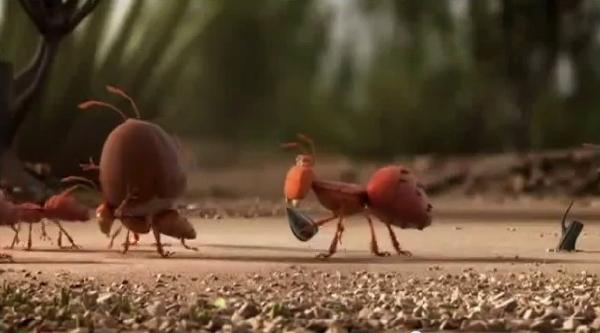 6-ants
