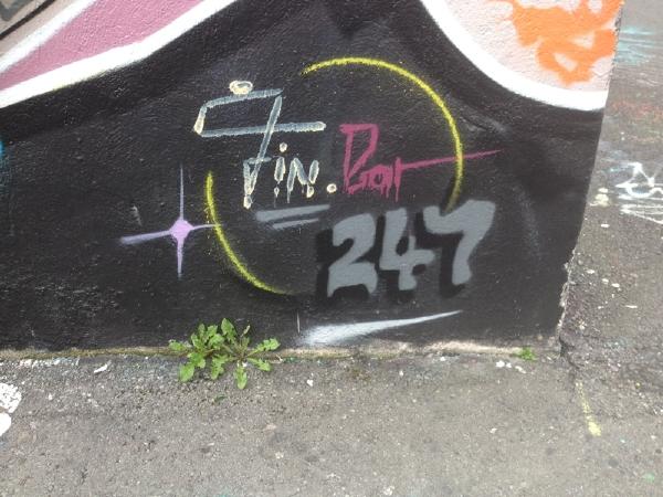 12- IMG_4233